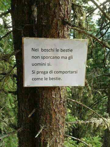 احترام به طبیعت